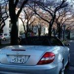 2005 Mercedes Benz SLK350 -AMG- EUR 13.550.- GBP 12.200.-